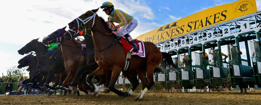 How To Place Your Preakness Stakes Bet